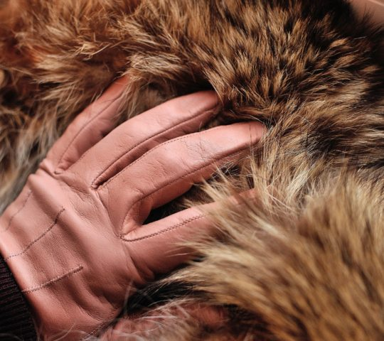 Jak se starat o kožené rukavice?